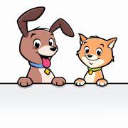 Pet rescue collection